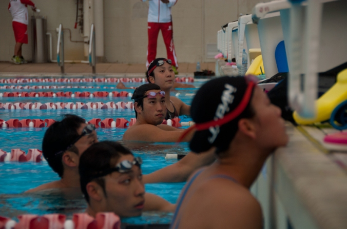 japan swimming team